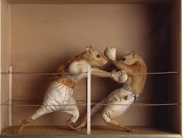 Topi combattenti